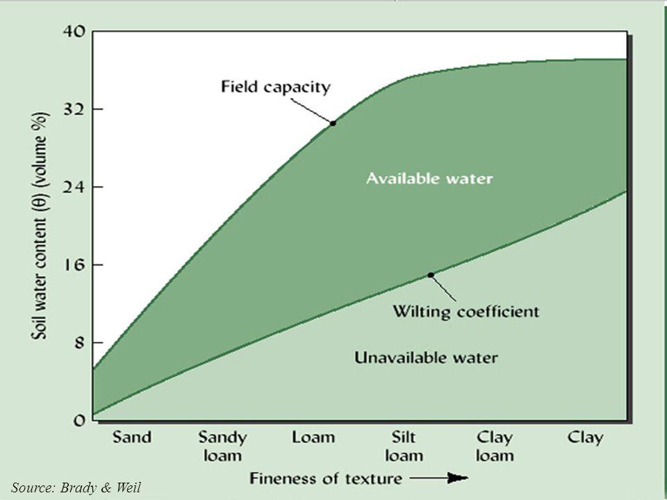 23. Discuss Water Content vs Texture in Soils