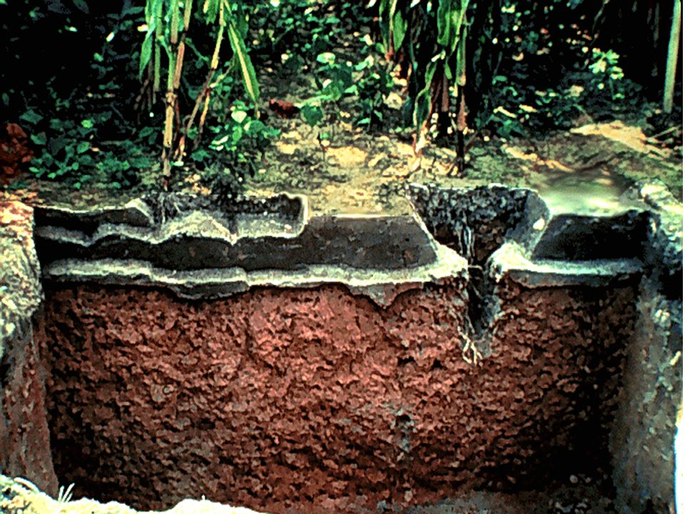 29. Good soil structure is very important in crop production