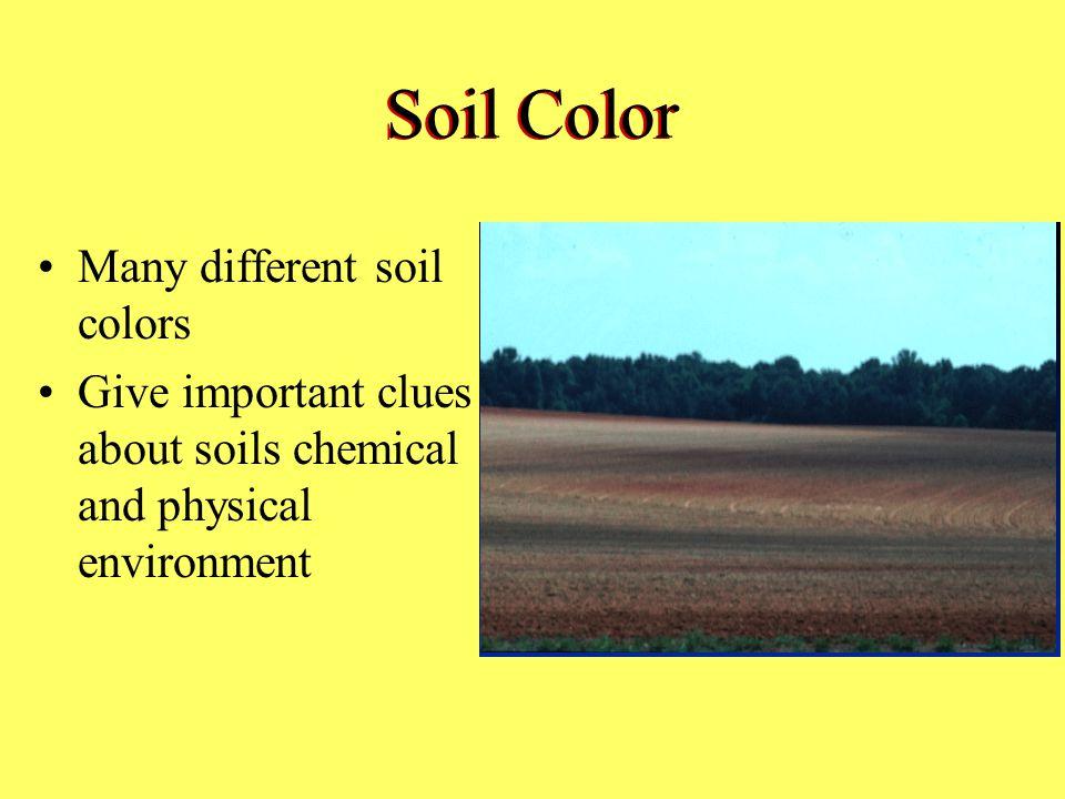 Soil Color Many different soil colors