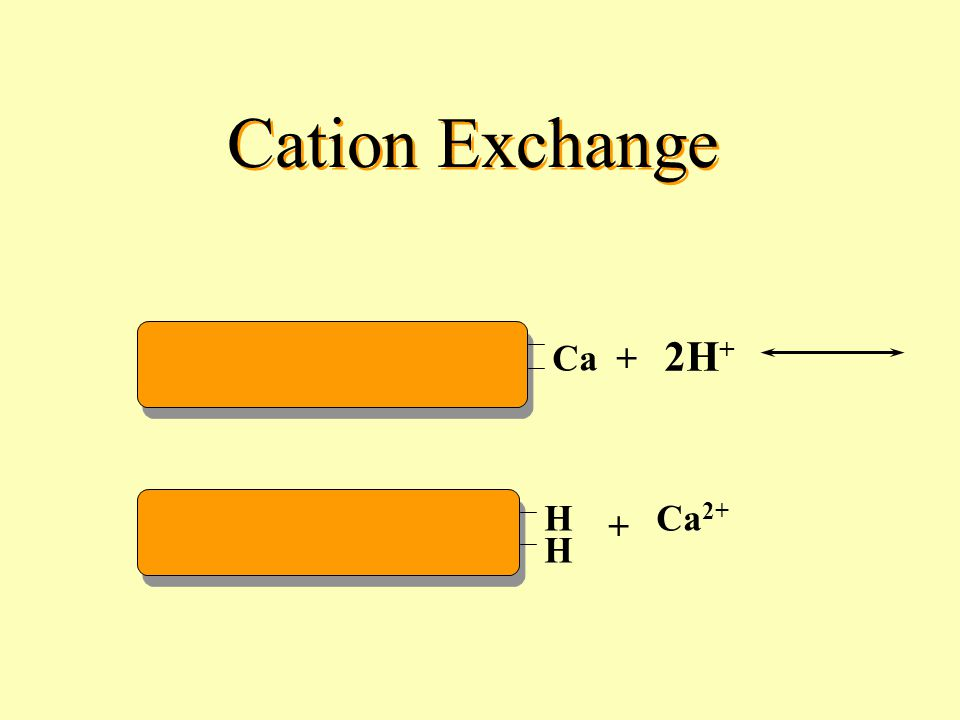 Cation Exchange 2H+ Ca + H + Ca2+