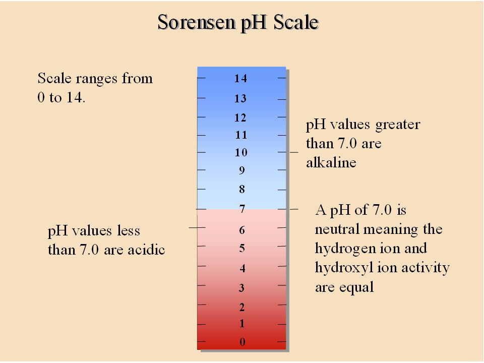 52. The pH scale is divided into values ranging from 0 to 14.