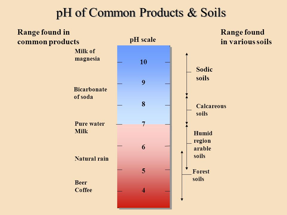 pH of Common Products & Soils