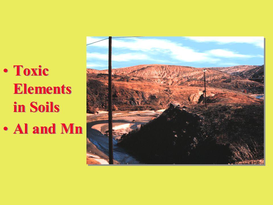 Toxic Elements in Soils