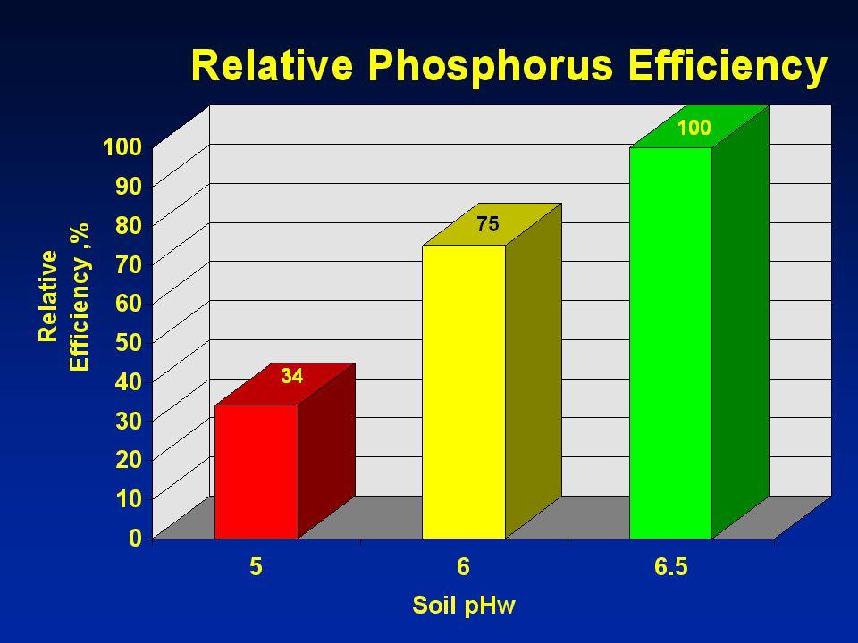 65. Here we see the relative efficiency of applied phosphorus