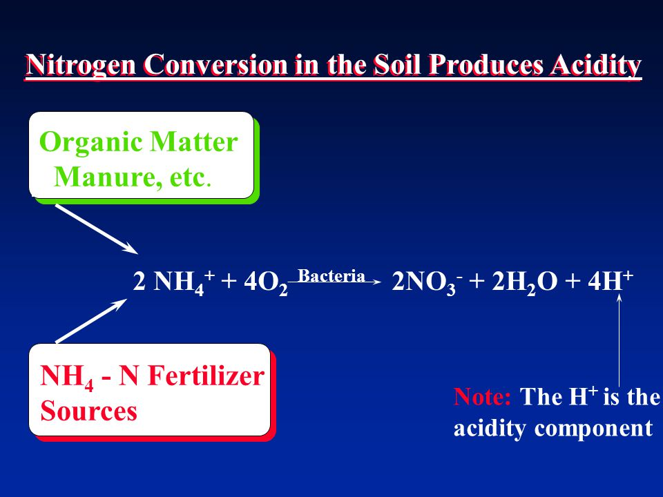 Nitrogen Conversion in the Soil Produces Acidity