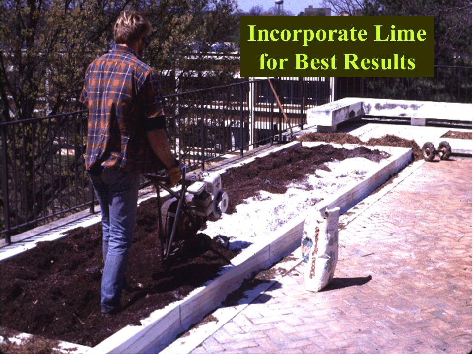 Incorporate Lime for Best Results