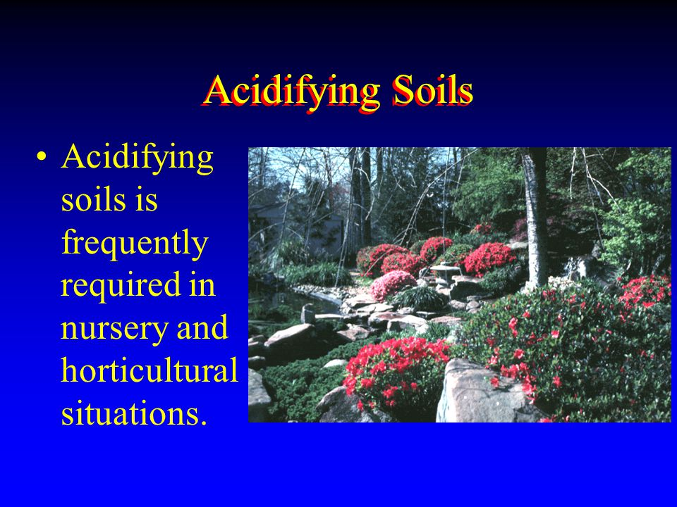 Acidifying Soils Acidifying soils is frequently required in nursery and horticultural situations.