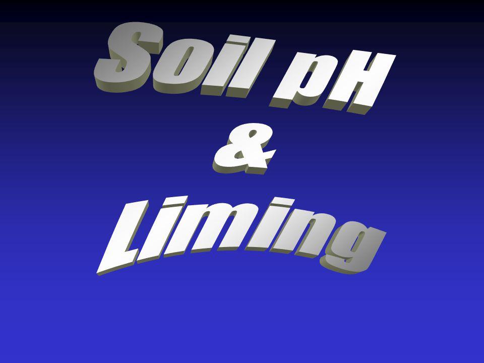 Soil pH & Liming
