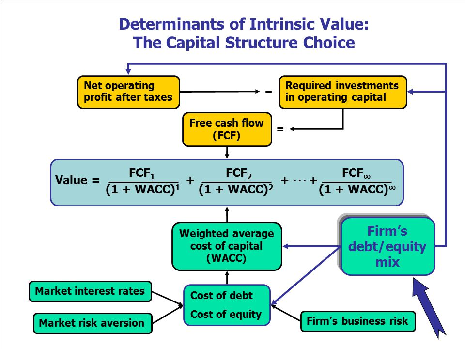 Determinants of Intrinsic Value: The Capital Structure Choice