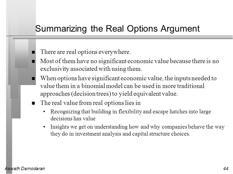 Summarizing the Real Options Argument