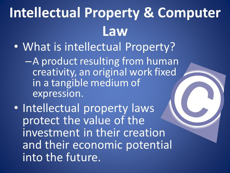 Intellectual Property & Computer Law