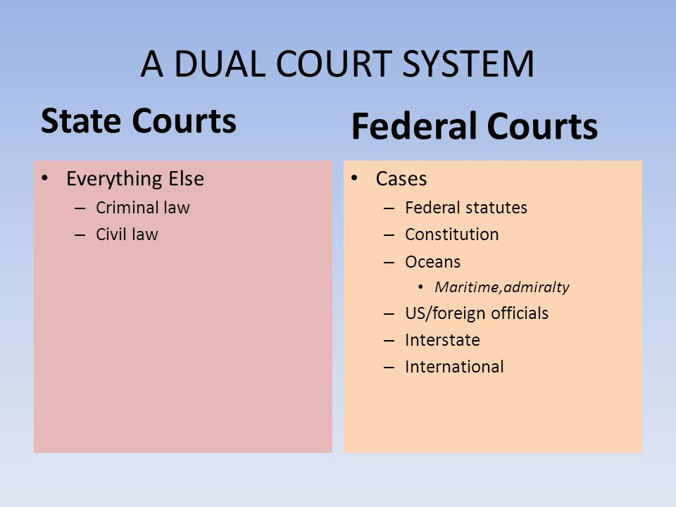 A DUAL COURT SYSTEM Federal Courts State Courts Everything Else Cases