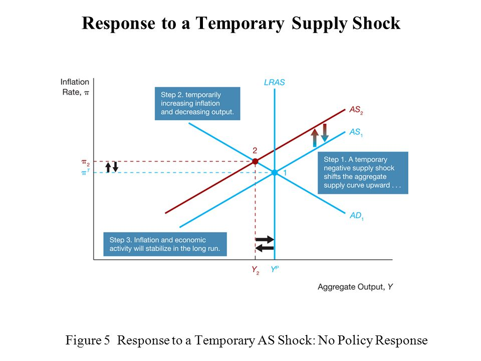 Figure 5 Response to a Temporary AS Shock: No Policy Response