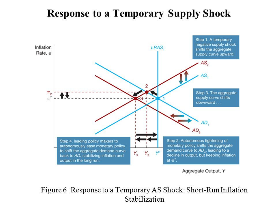 Response to a Temporary Supply Shock
