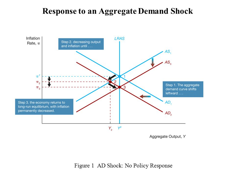 Figure 1 AD Shock: No Policy Response