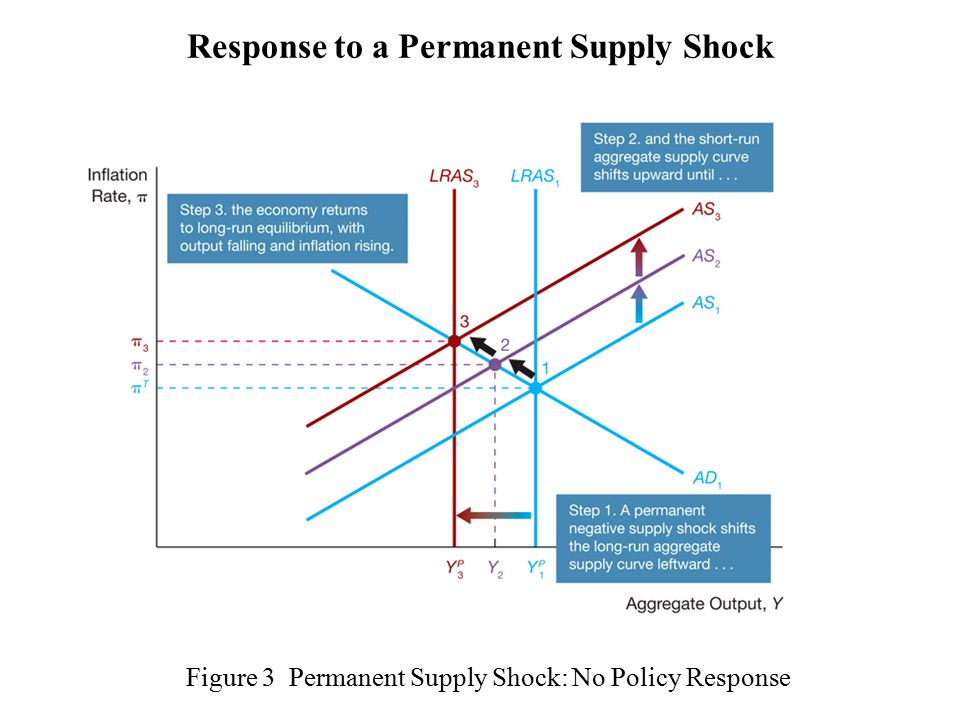 Figure 3 Permanent Supply Shock: No Policy Response