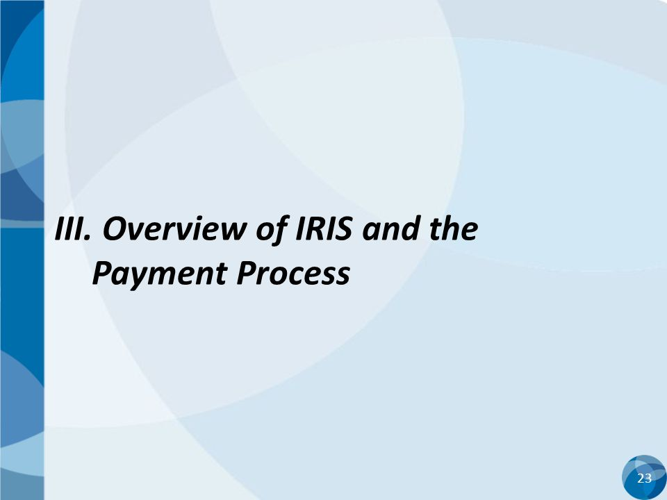 III. Overview of IRIS and the Payment Process