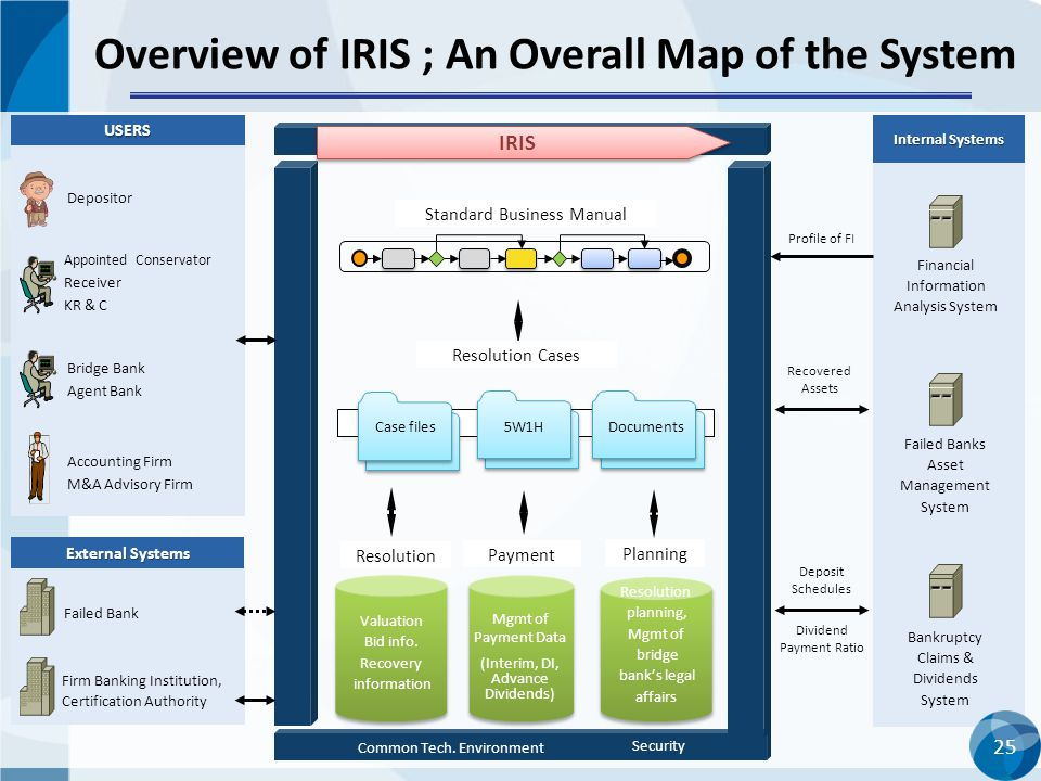 Overview of IRIS ; An Overall Map of the System