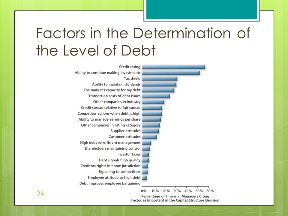 Factors in the Determination of the Level of Debt