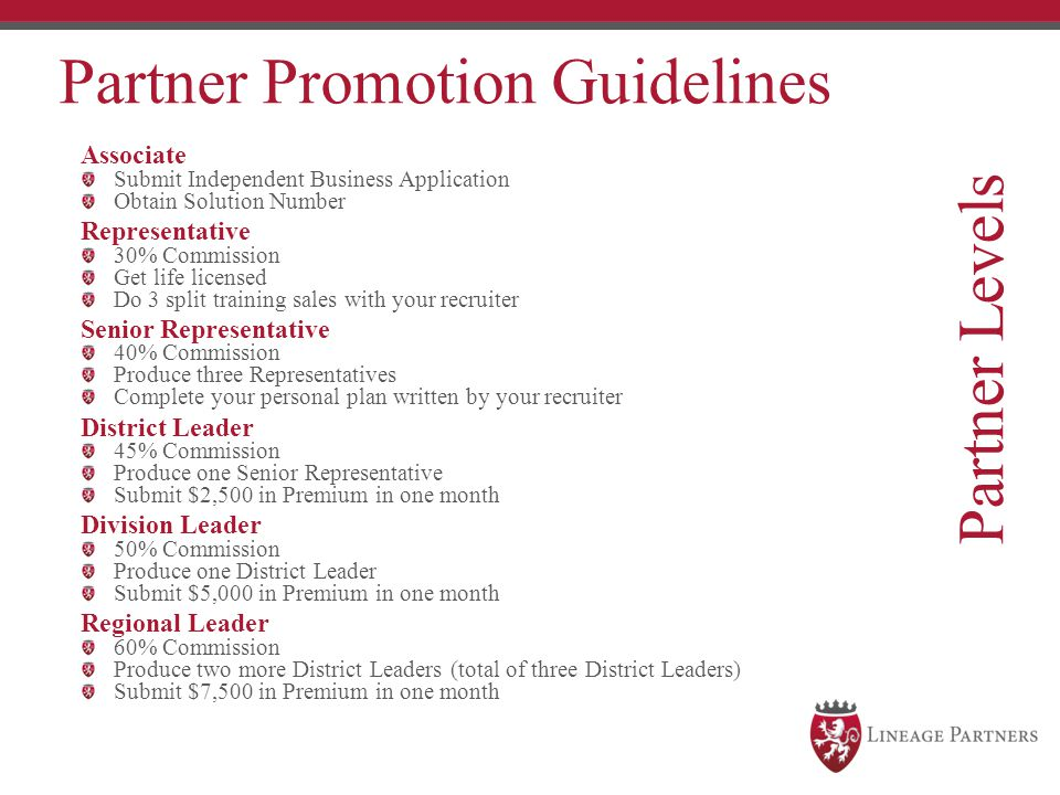 Partner Levels Partner Promotion Guidelines Associate Representative