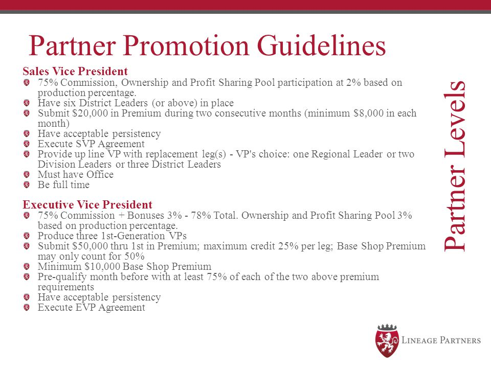 Partner Levels Partner Promotion Guidelines Sales Vice President