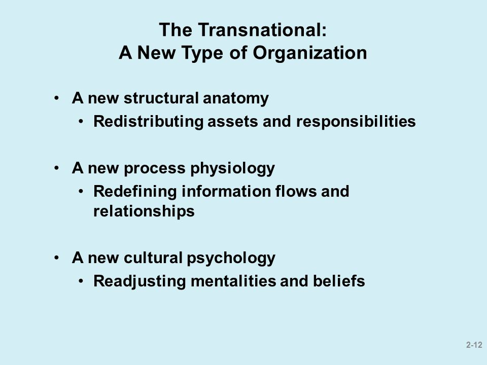 The Transnational: A New Type of Organization
