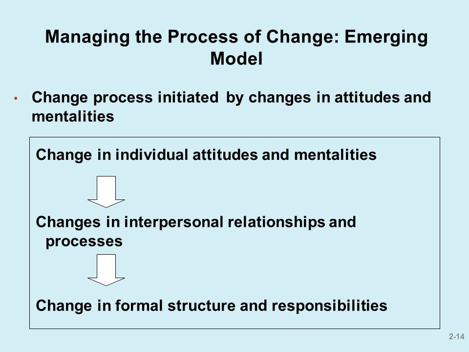 Managing the Process of Change: Emerging Model