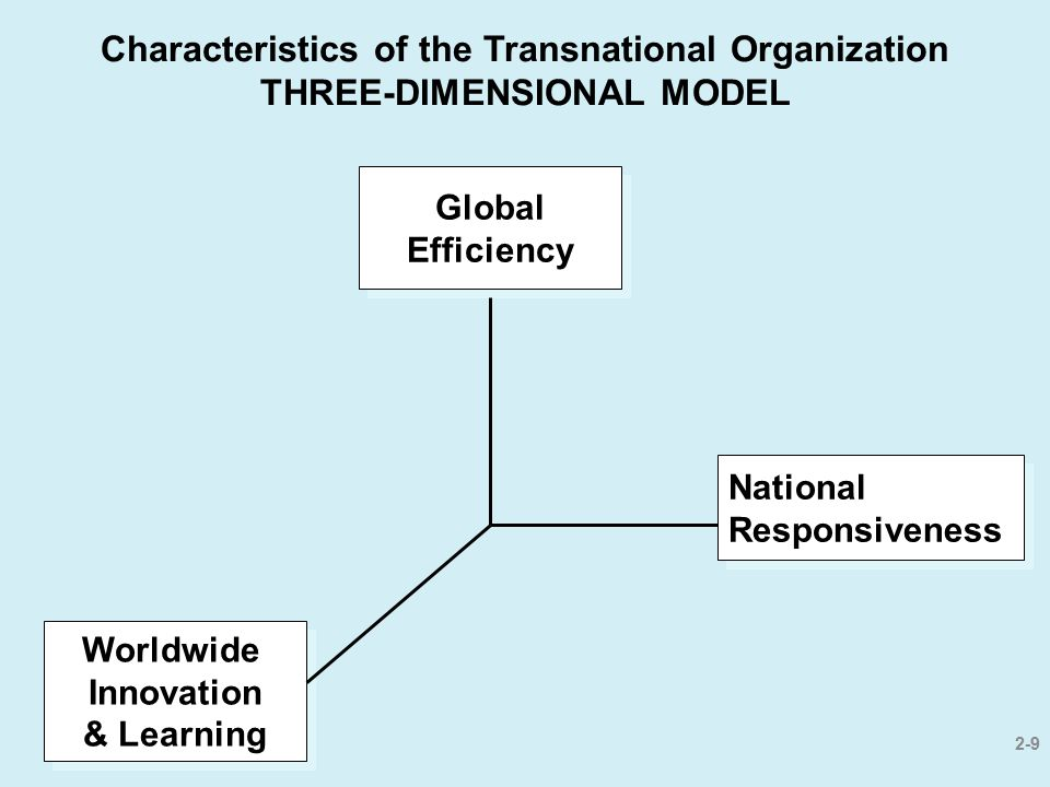 Characteristics of the Transnational Organization THREE-DIMENSIONAL MODEL