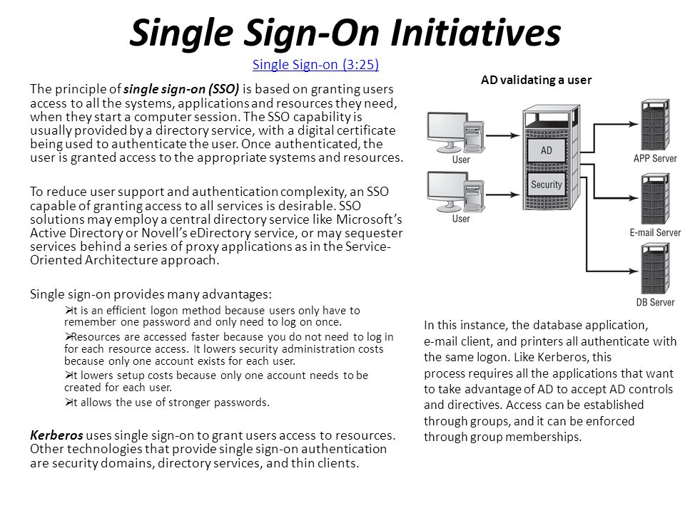 Single Sign-On Initiatives