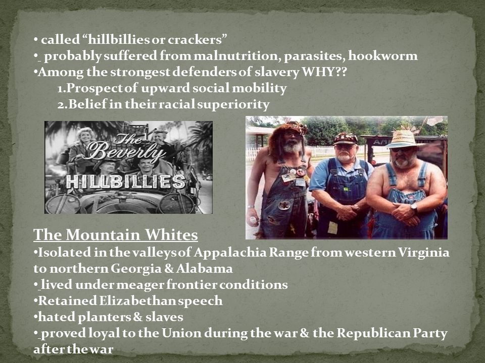 The Mountain Whites called hillbillies or crackers