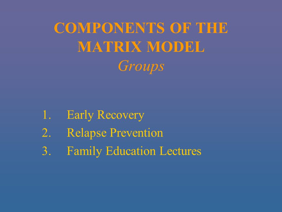 COMPONENTS OF THE MATRIX MODEL Groups