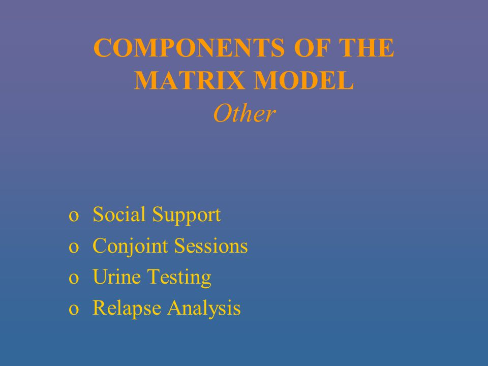 COMPONENTS OF THE MATRIX MODEL Other