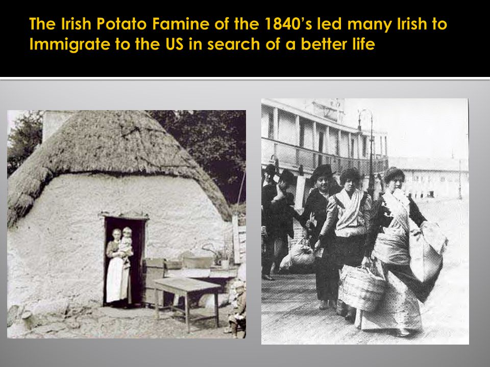 The Irish Potato Famine of the 1840's led many Irish to Immigrate to the US in search of a better life