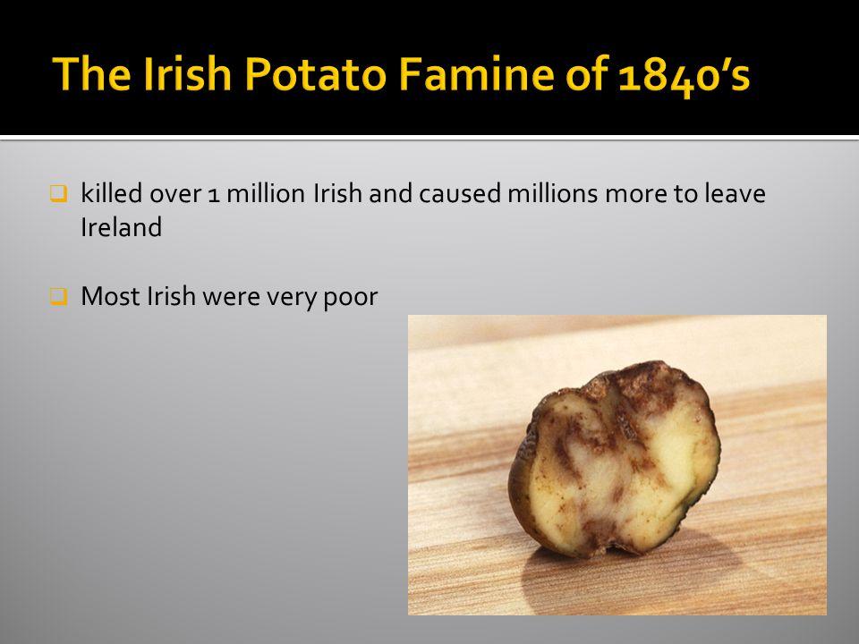 The Irish Potato Famine of 1840's