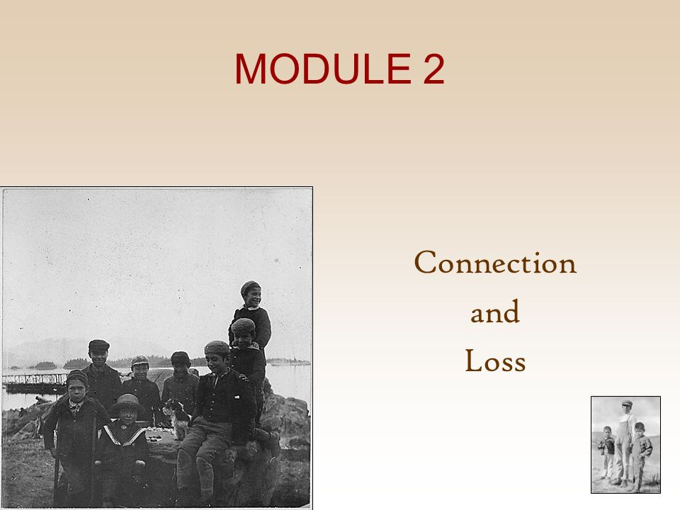MODULE 2 Connection and Loss