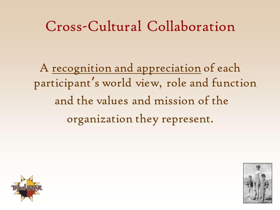 Cross-Cultural Collaboration