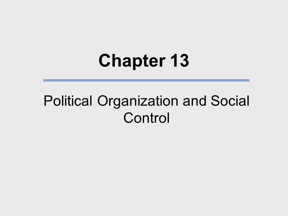 Political Organization and Social Control