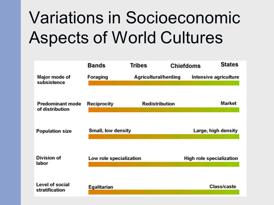 Variations in Socioeconomic Aspects of World Cultures