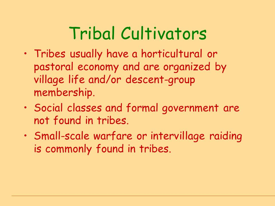 Tribal Cultivators Tribes usually have a horticultural or pastoral economy and are organized by village life and/or descent-group membership.