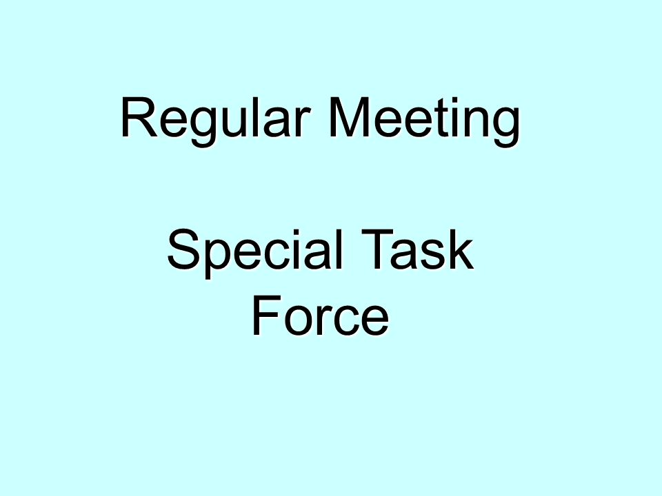 Regular Meeting Special Task Force