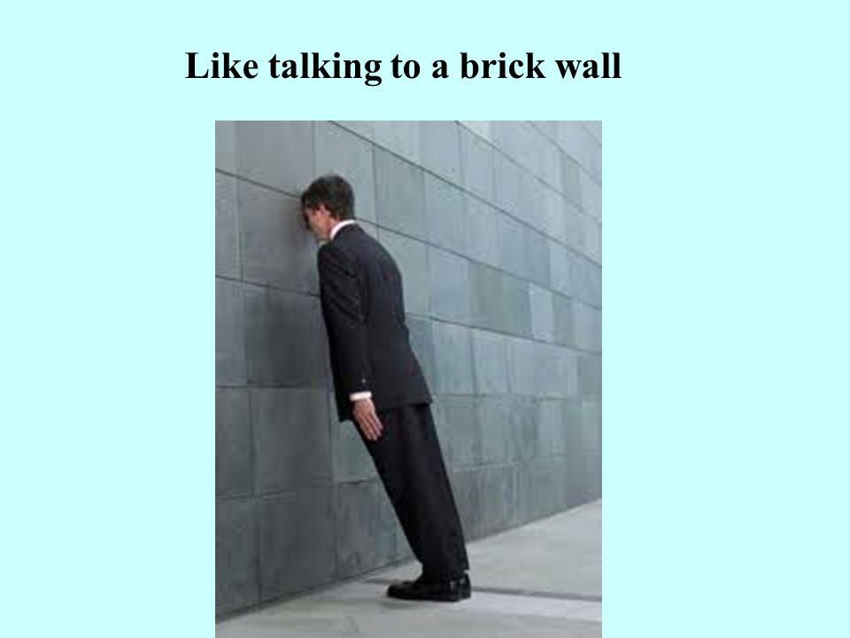 Like talking to a brick wall