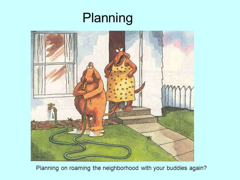 Planning Planning on roaming the neighborhood with your buddies again