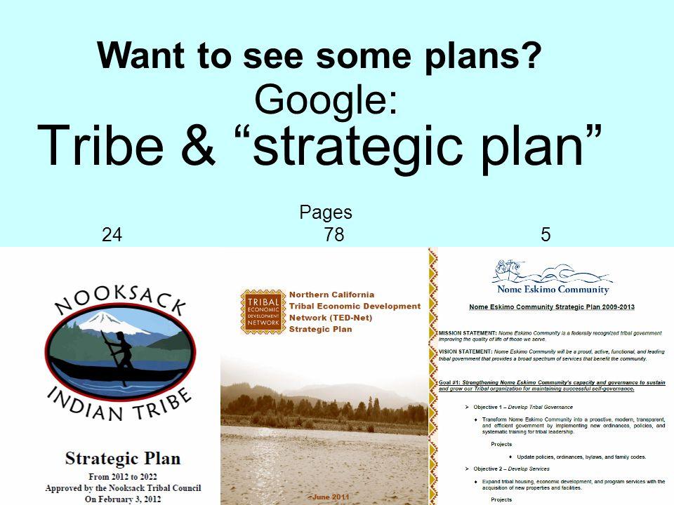 Tribe & strategic plan