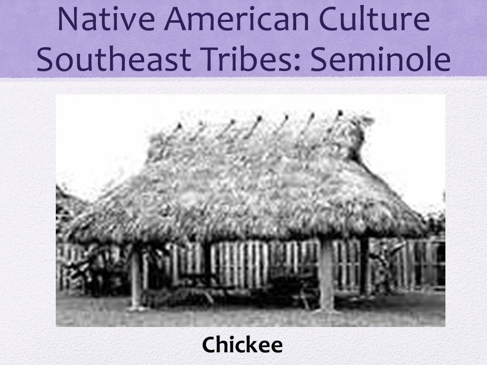 Native American Culture Southeast Tribes: Seminole