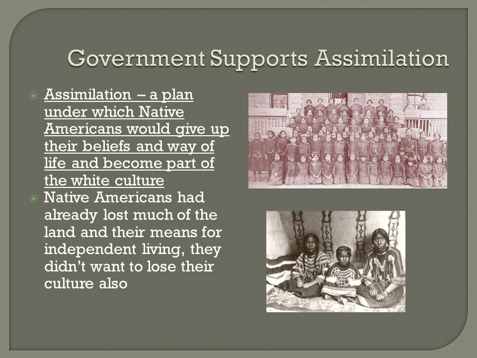 Government Supports Assimilation