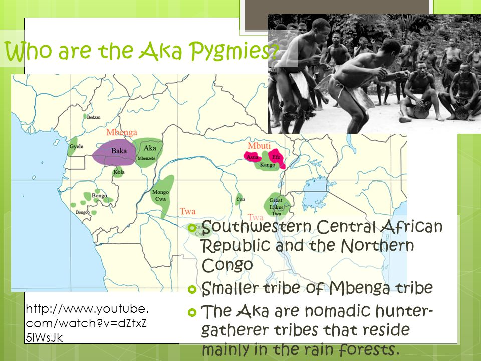 Who are the Aka Pygmies Southwestern Central African Republic and the Northern Congo. Smaller tribe of Mbenga tribe.