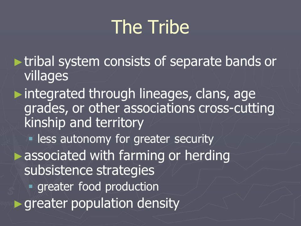 The Tribe tribal system consists of separate bands or villages