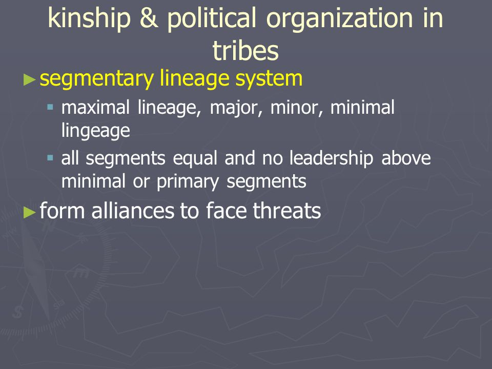 kinship & political organization in tribes
