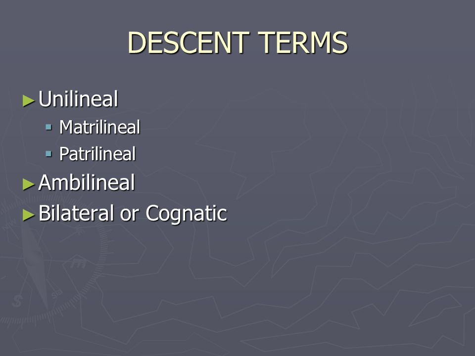 DESCENT TERMS Unilineal Ambilineal Bilateral or Cognatic Matrilineal