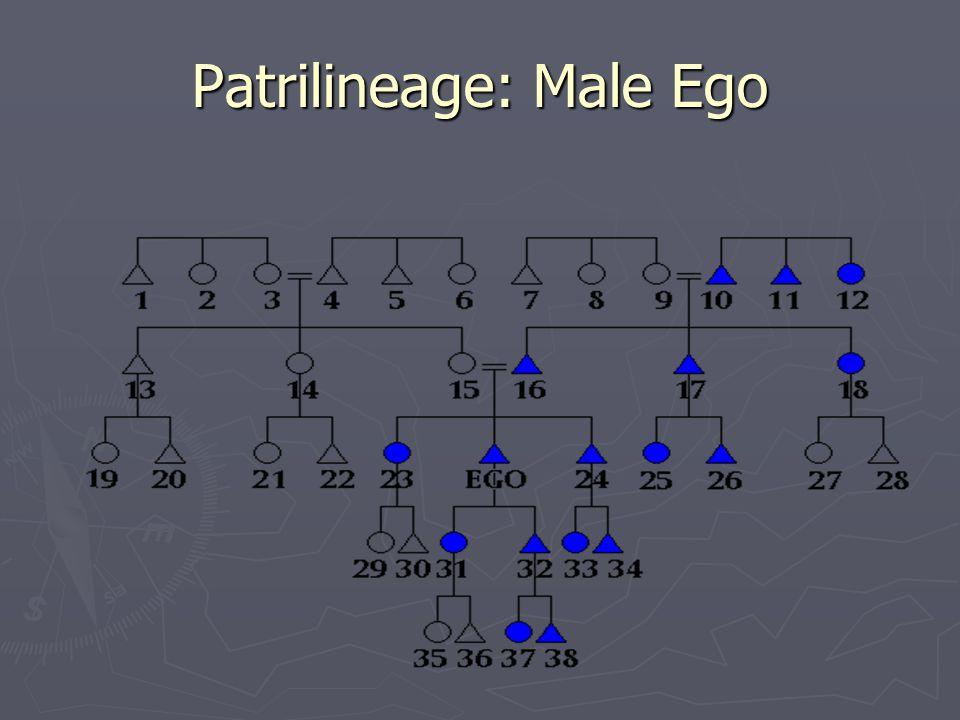 Patrilineage: Male Ego